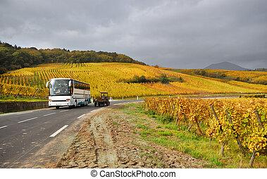 autoroute, parcours, vigne