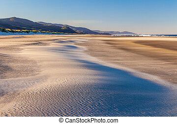 autour de, soufflé, être, dune, plage sable, vent
