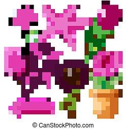 autre, fleurs roses, choses, ensemble