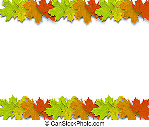 Autum Background with colorful fall leaves in line