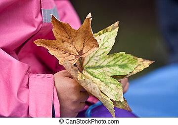 child have leaves in the hand