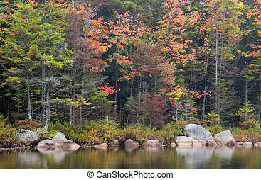 Rainy day photo of autumn colors and reflection taken at Sis Lake in the Adirondacks