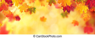 Autumn abstract background with falling leaves - Autumn...