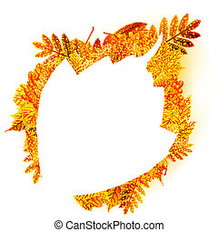 Autumn abstract floral background. with copyspace.