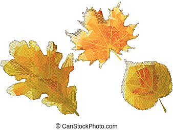 autumn abstract leaves