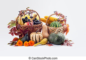 Autumn and Thanksgiving concept.