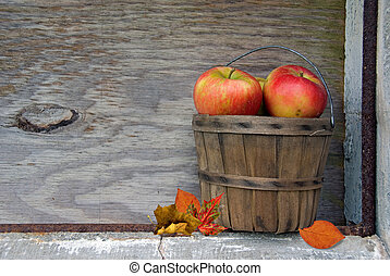 Autumn apples wth leaves