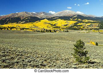 Autumn at Mt. Elbert in Colorado