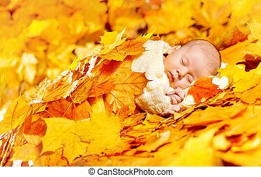 Autumn Baby Sleeping, Newborn Kid Fall Yellow Leaves, Asleep New Born