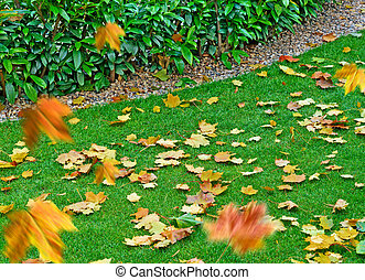 Autumn Background. Autumn garden with falling leaves.