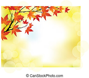 autumn background - autumn tree background