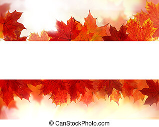 Autumn background border with white copy space