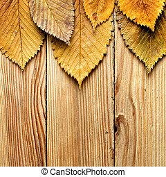 Autumn background. Leaves border on wood