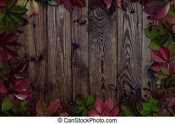 Autumn background of red leaves of wild grapes on dark wooden boards with copy space.