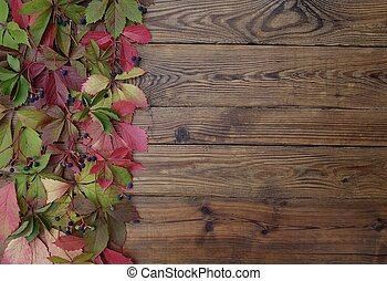 Autumn background of red leaves of wild grapes on wooden boards with copy space.
