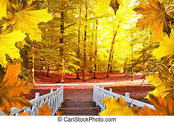 Autumn background. White small bridge in the park.