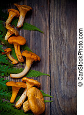 Autumn background with chanterelles in wooden rustic table