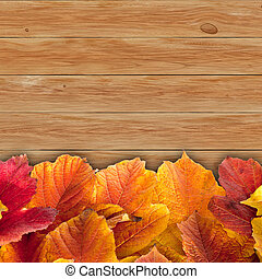 Autumn background with colored viburnum leaves on wooden board