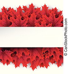 Autumn background with crimson maple leaves. - Autumn square...