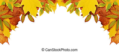 Autumn background with dried leaves in a corner - Autumn ...
