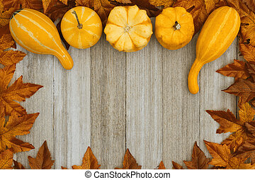 Autumn background with gourds and fall leaves on weathered wood