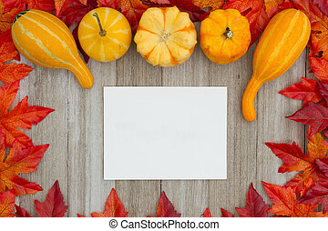Autumn background with gourds and fall leaves with a greeting card on weathered wood