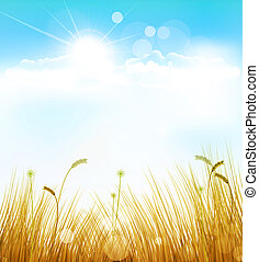 autumn background with grass and blue sky