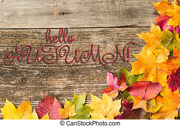 Autumn background with Hello Autumn letters on wooden background