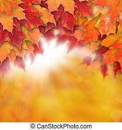 Autumn background with leaves. Colorful fall leaves and abstract gold bokeh light
