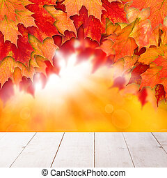 Autumn background with leaves. Colorful fall leaves and abstract