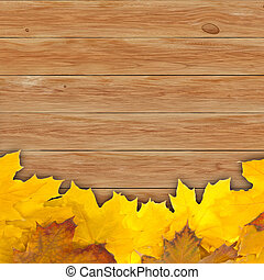 Autumn background with maple leaves on wooden board