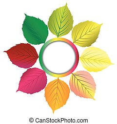 Autumn background with round frame and leaves