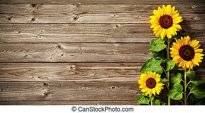 sunflowers on wooden board - Autumn background with ...