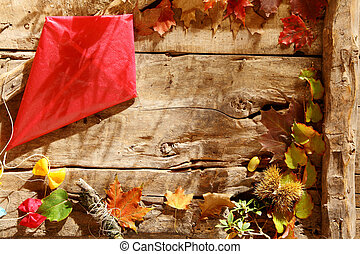 Autumn background with vivid red kite