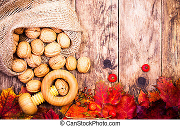 Autumn background with walnuts and colorful tree leaves.