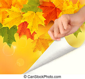 Autumn background with yellow leave