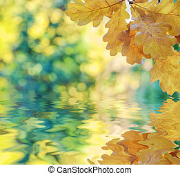 Autumn background with yellow leaves reflected in a water