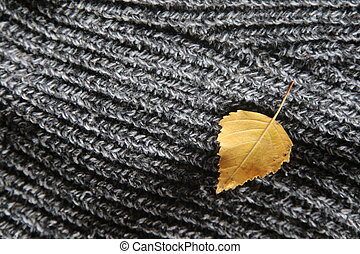 autumn background - yellow leaf