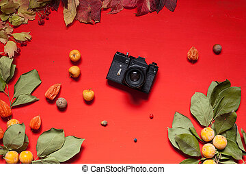 autumn background yellow leaves red berries on a red background