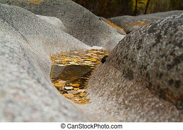 Yellow maple leaf on the water surface among the rocks