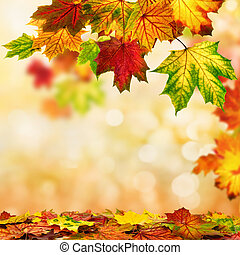 Autumn bokeh background bordered with leaves - Colorful...