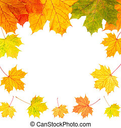 Autumn border card of colored leaves