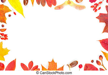 Autumn border. Fall leaves composition isolated on white background