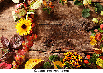 Autumn border with berries, leaves and flowers