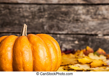 Autumn border with big pumpkin