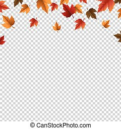 Autumn Border With Leaves Isolated