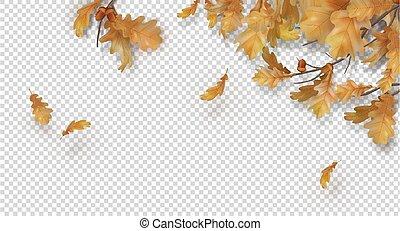 Autumn border with oak leaves