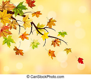 Branch with autumn maple leaves on natural background, vector illustration.