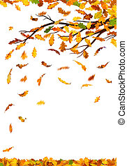Branch with autumn oak leaves falling down, isolated on white background.