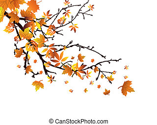 Autumn branch - Vector illustration of colorful leaves on an...